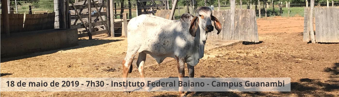 I Dia de Campo de Bovinocultura de Leite
