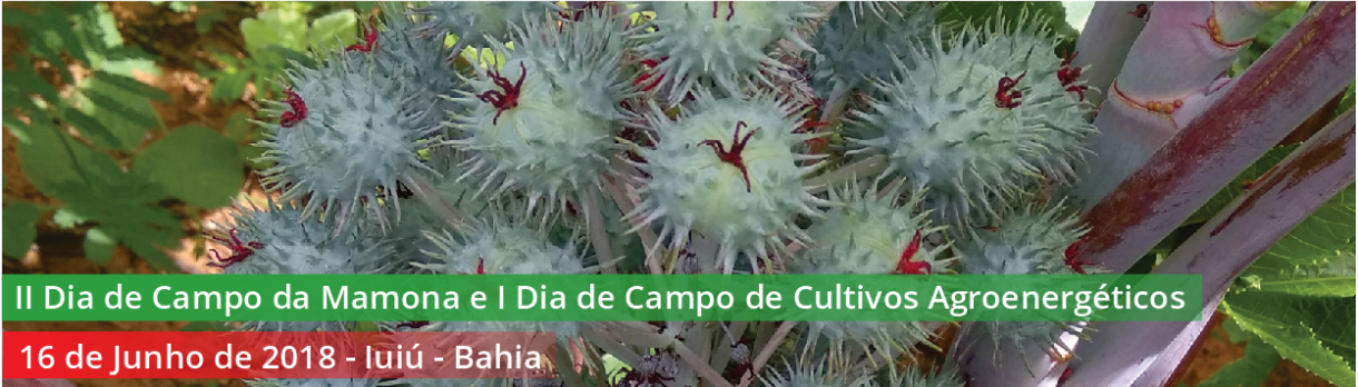 Dia de Campo da Mamona – Campus Guanambi